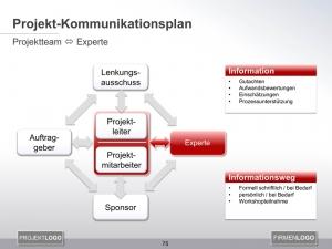 Kommunikationsplan Projektteam mit Experte