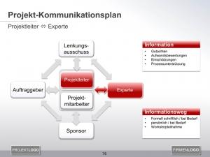 Kommunikationsplan Projektleiter mit Experte