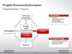 Kommunikationsplan Projektmitarbeiter mit Experte